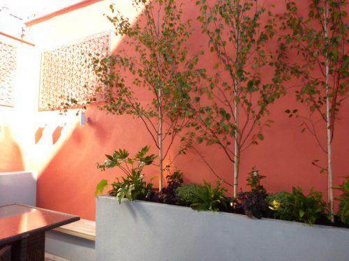 Basement Courtyard Garden Design Hampstead