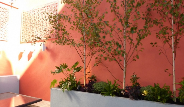Small Basement Courtyard Garden Design in London