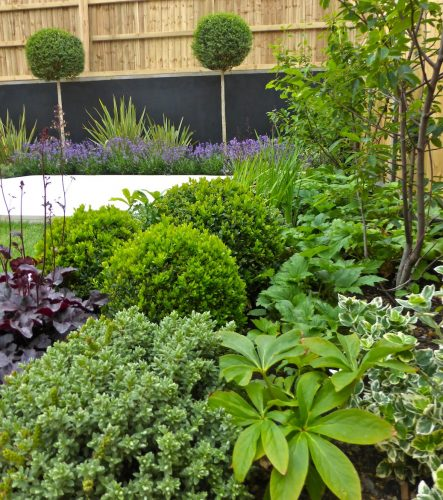 Property Developers Show Garden Design