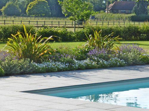 Contemporary Family Garden Design with Pool