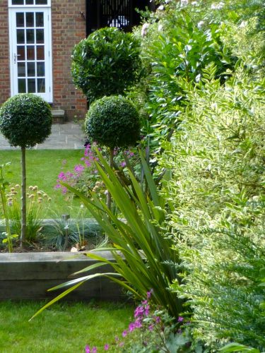 Large Family Garden Design Golders Green