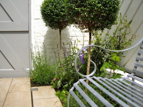 Small Courtyard Garden Design Hampstead